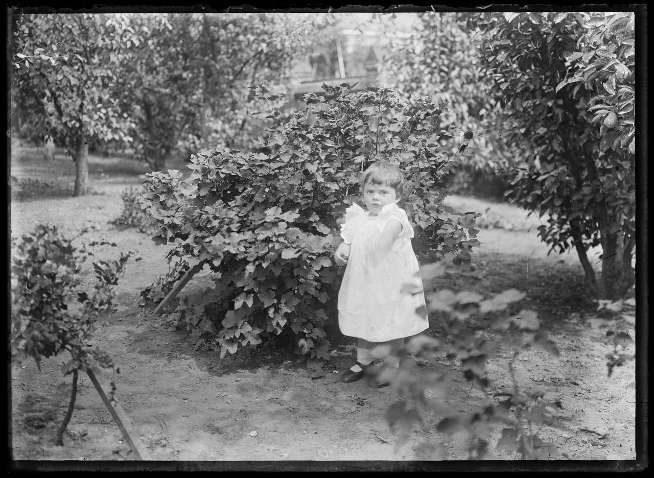 Glasnegatief van foto van kind in tuin