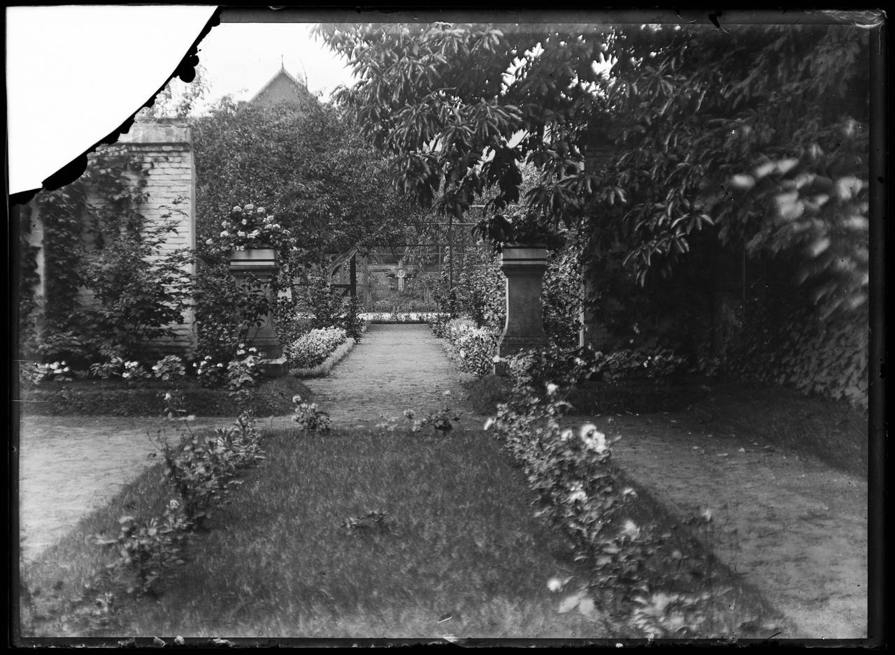 Glasnegatief van foto van tuin
