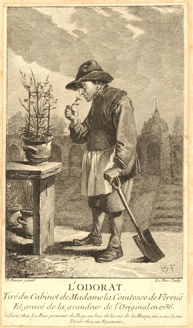Gravure l'Odorat Jaques-Philippe le Bas British Museum.jpg